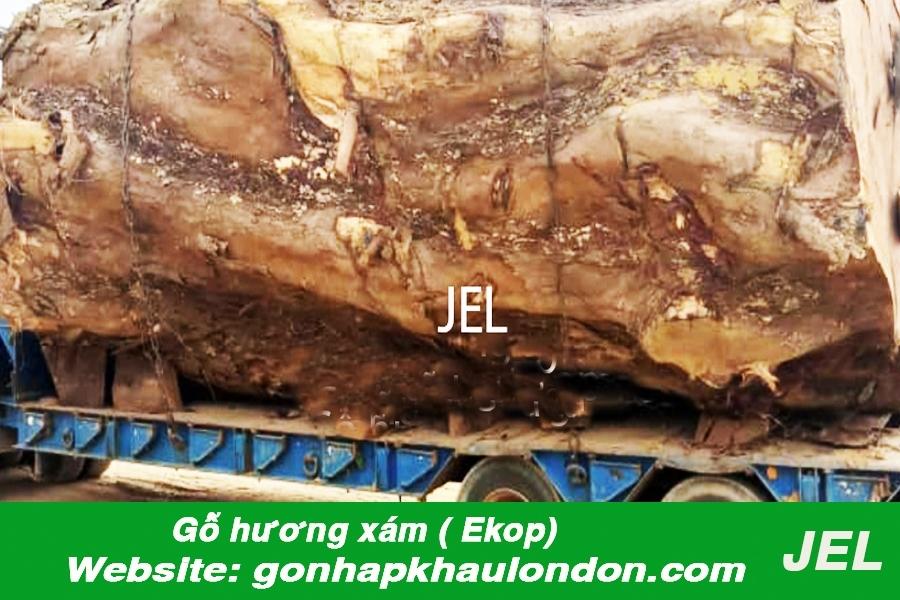 gỗ hương xám nhập khẩu