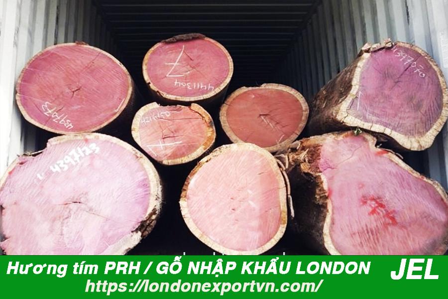 CÔNG TY TNHH LONDON EXPORT VN  - Địa chỉ vàng trong cung cấp gỗ hương tím chất lượng